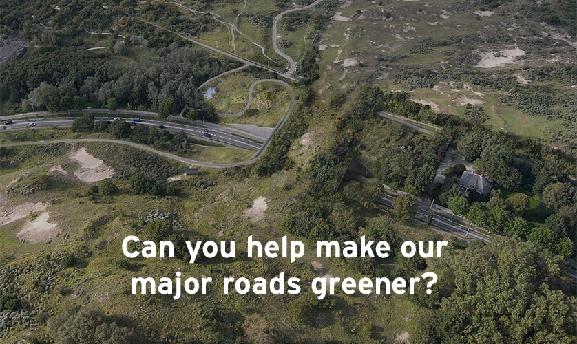 Can you help make our major roads greener? Photo by natuurbrugzandpoort.nl