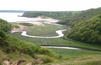 Photo: The Gower